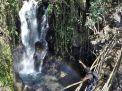 Berbagai Potensi di Desa Argoyuwono Kecamatan Ampelgading
